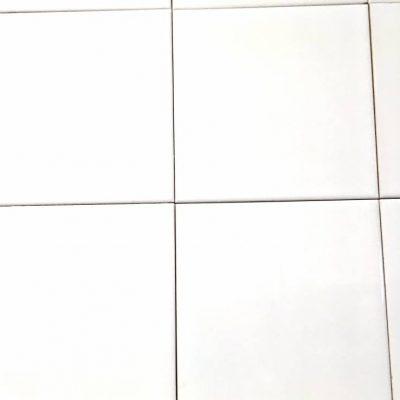 Binnentegel wandtegel 15x15 € 10,95 m2 nr 22w Livingstone Goes